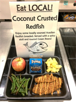 School Lunch with Compostable Tray